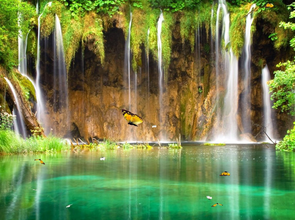 Download Charm Waterfall Animated Wallpaper 1144x853