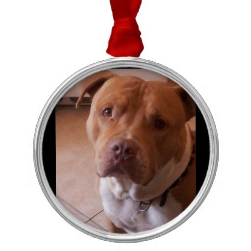 pitbull christmas ornaments Zazzle 512x512