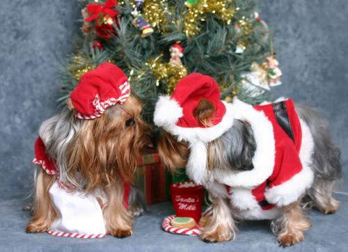 Danbury Mint Christmas Tree
