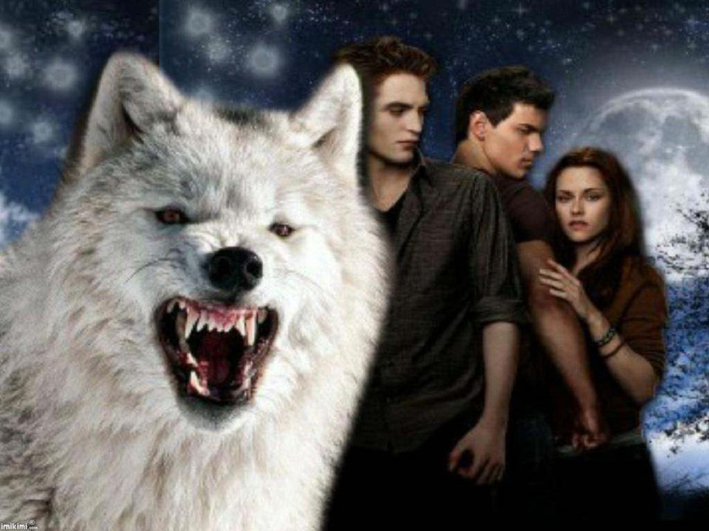 TWILIGHT WOLF WALLPAPER   124639   HD Wallpapers   [wallpapersinhq 1024x768