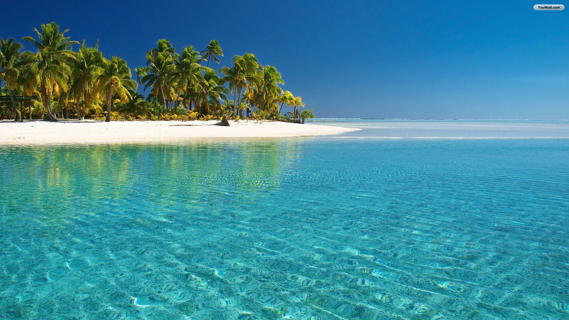 tropical beach wallpaper glass water 1920x1080jpg 1920x1080