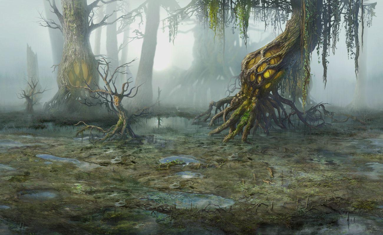 Similiar Swamp Background Keywords 1300x800