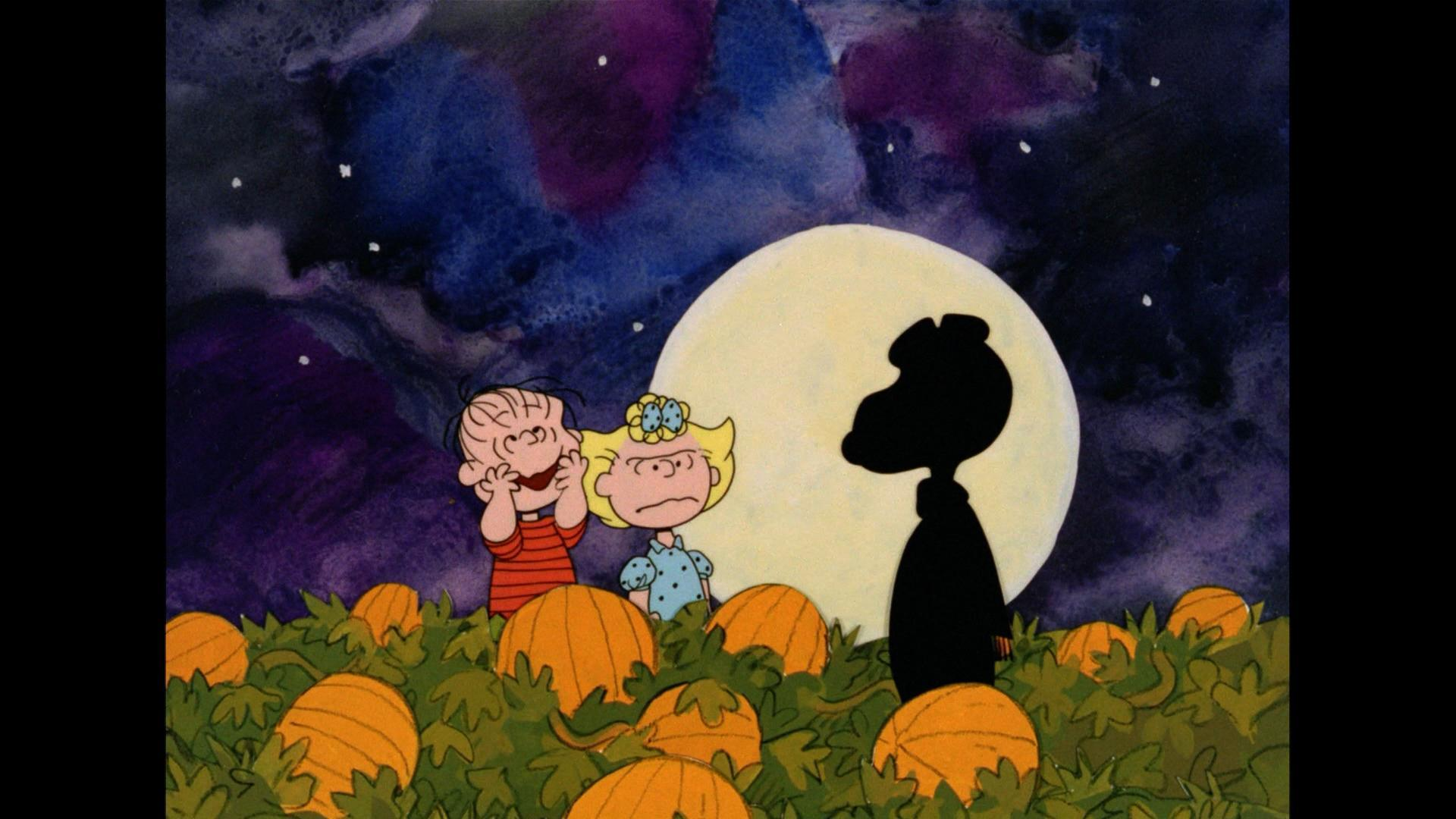 Free Download Great Pumpkin Charlie Brown Wallpapers 1920x1080