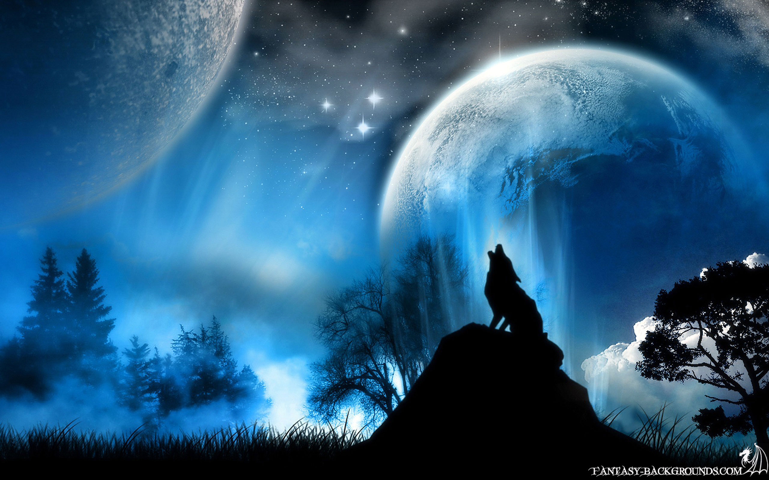 Blue is an awesome color   Blue Wallpaper 23926297 2560x1600