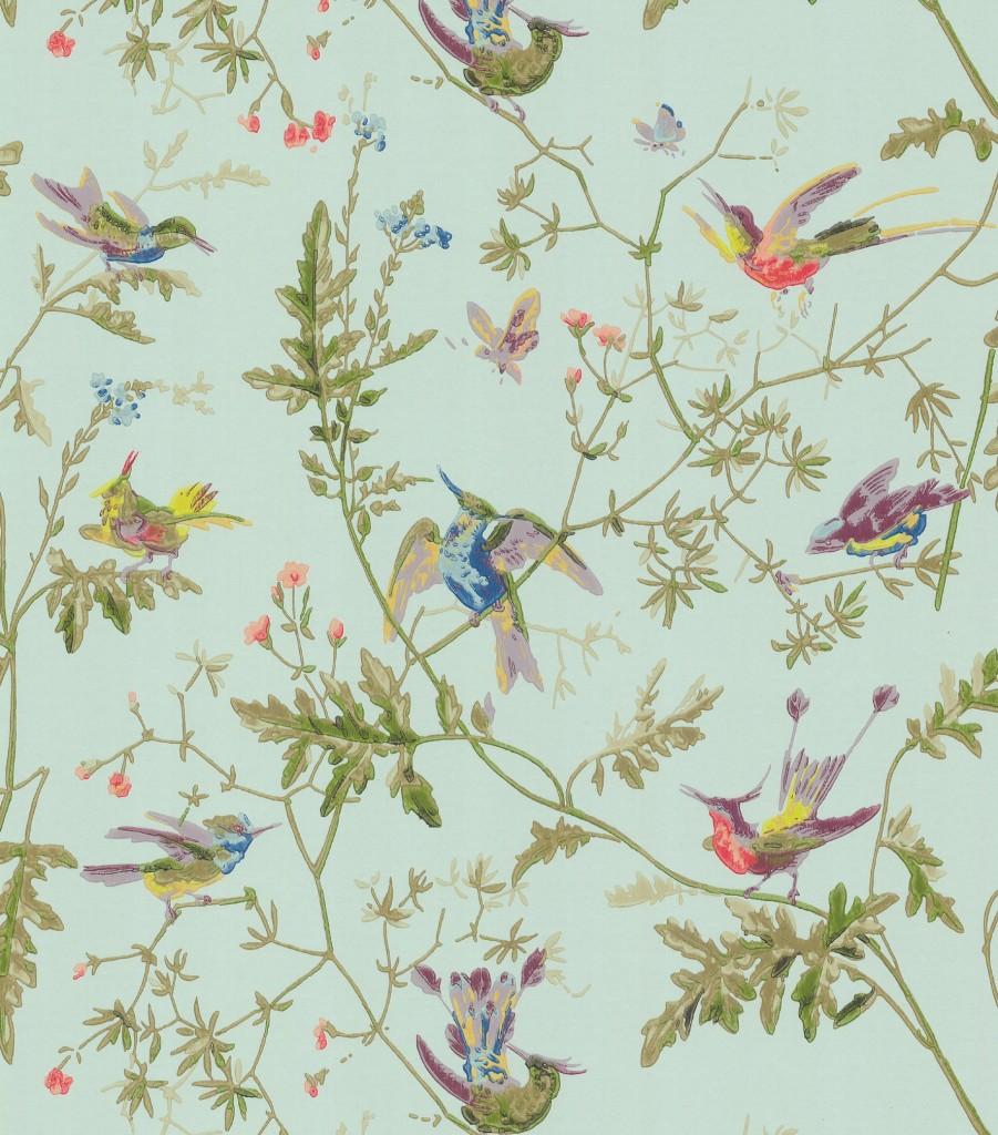 Bird Wallpaper 901x1024