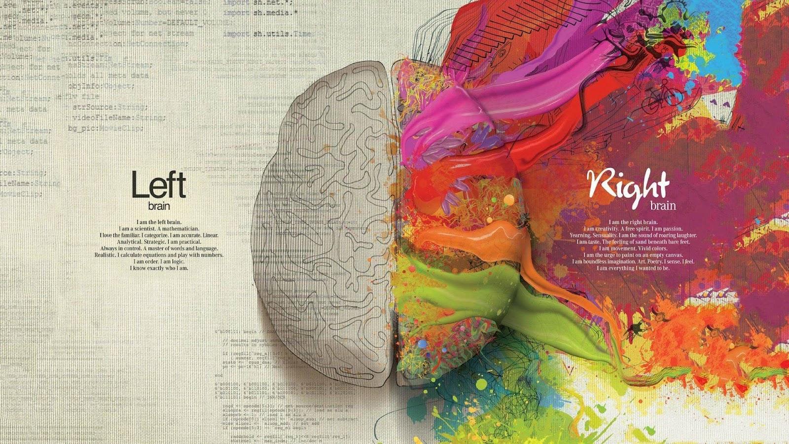 WallSheets Brain Desktop Wallpapers and Backgrounds 1600x900