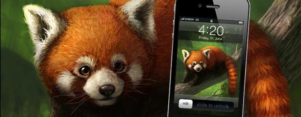iPhone 4 red panda wallpaper   wwwelisemartinsoncomwww 590x230