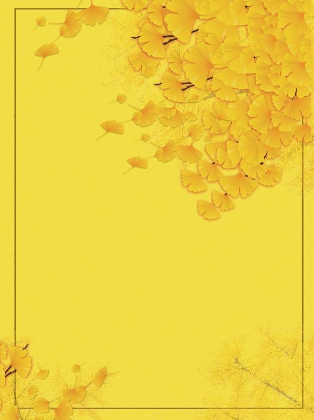 Drunk Beauty Ginkgo Background Material Autumn Autumn Background 640x854