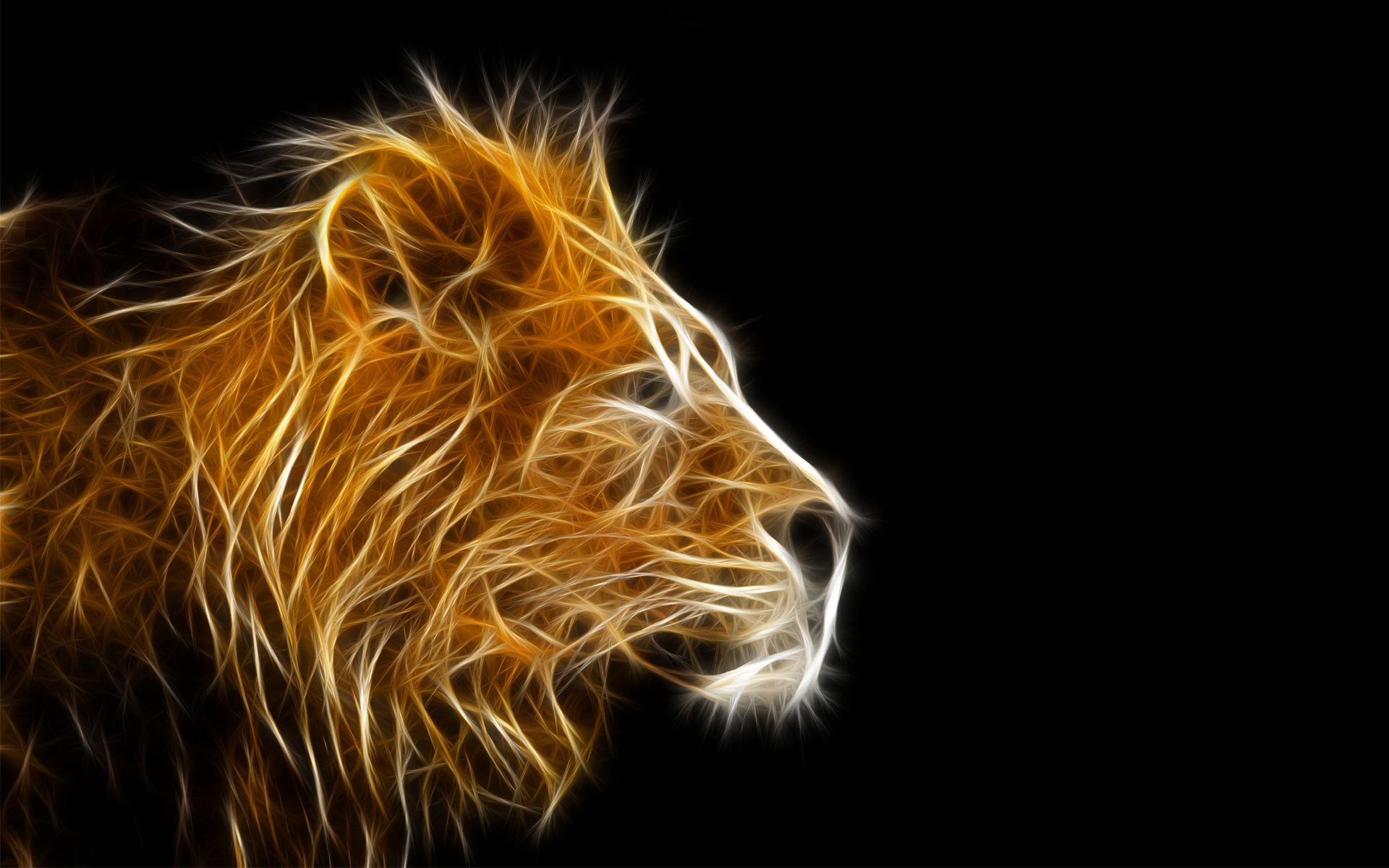 Cool Lion Wallpaper Graphic 3D 1920x1200