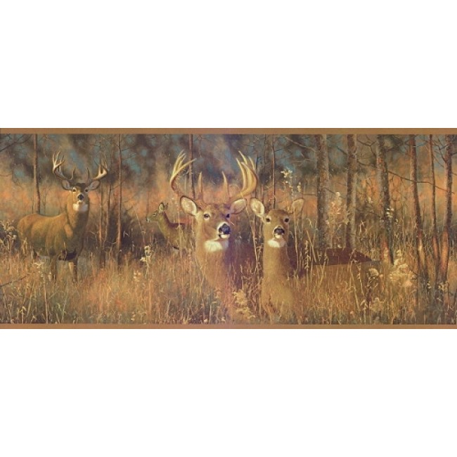 Deer Hiding In The Tall Grass Wallpaper Border   All 4 Walls Wallpaper 650x650