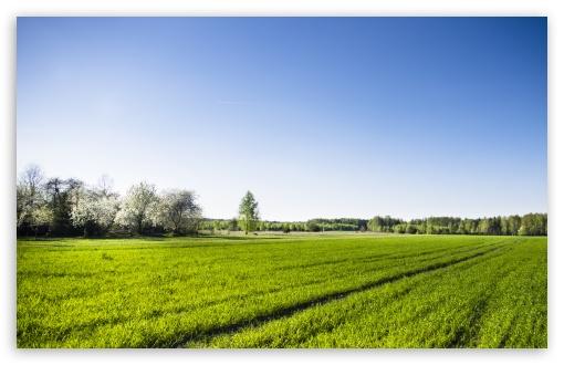 Spring HD desktop wallpaper Widescreen High Definition 510x330
