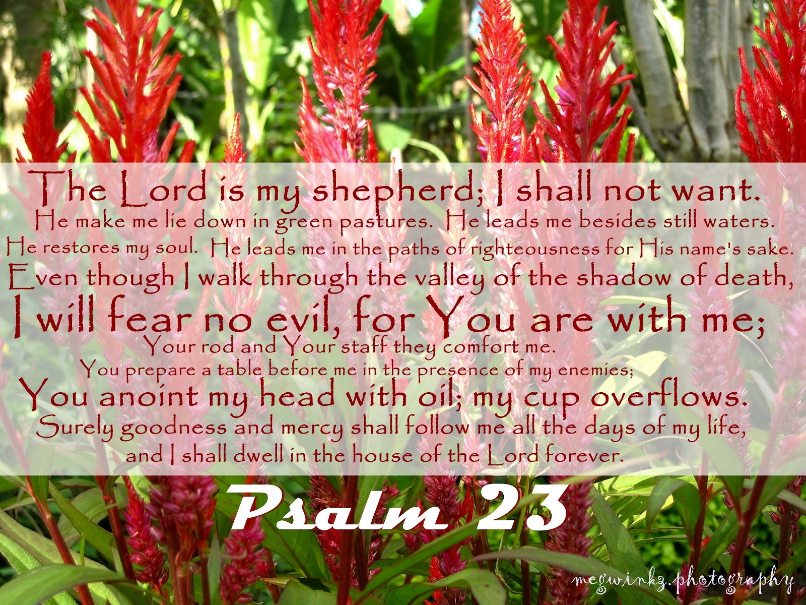 images of psalm 23 wallpaper psalm 23 fuckyoubitchbitch x1homevideo 1600x1200