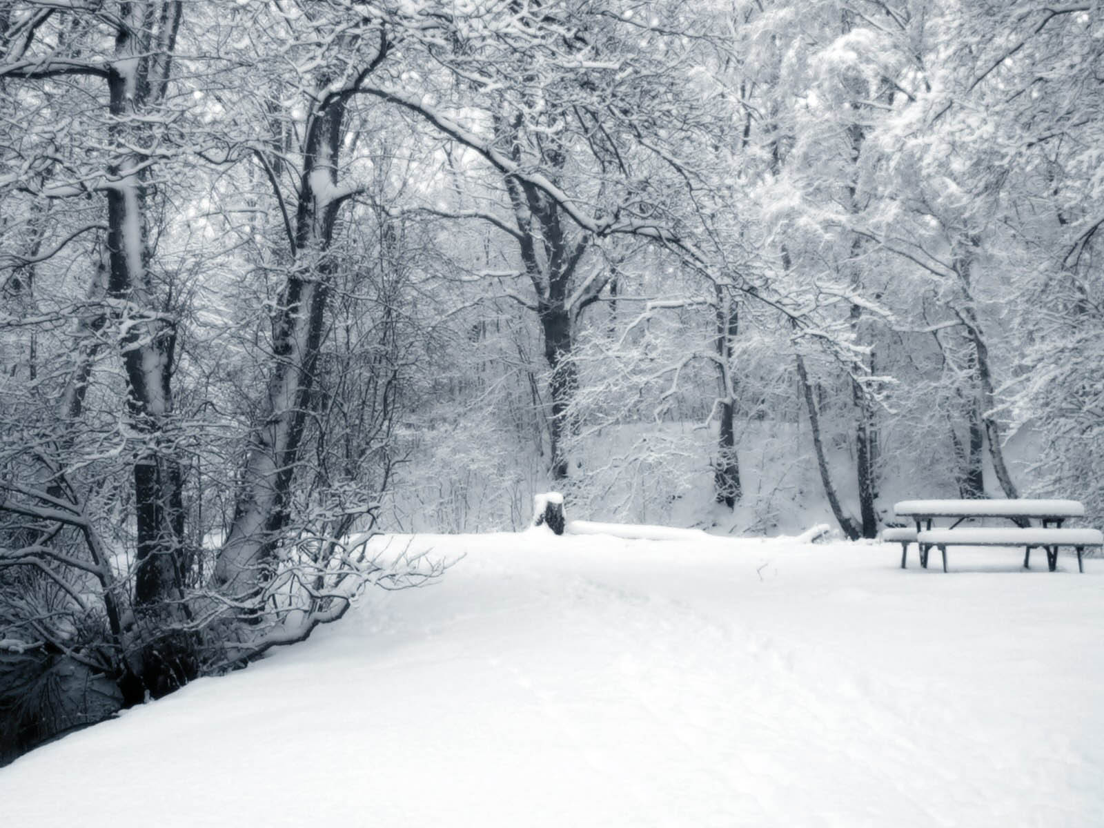 Winter Backgrounds 1600x1200