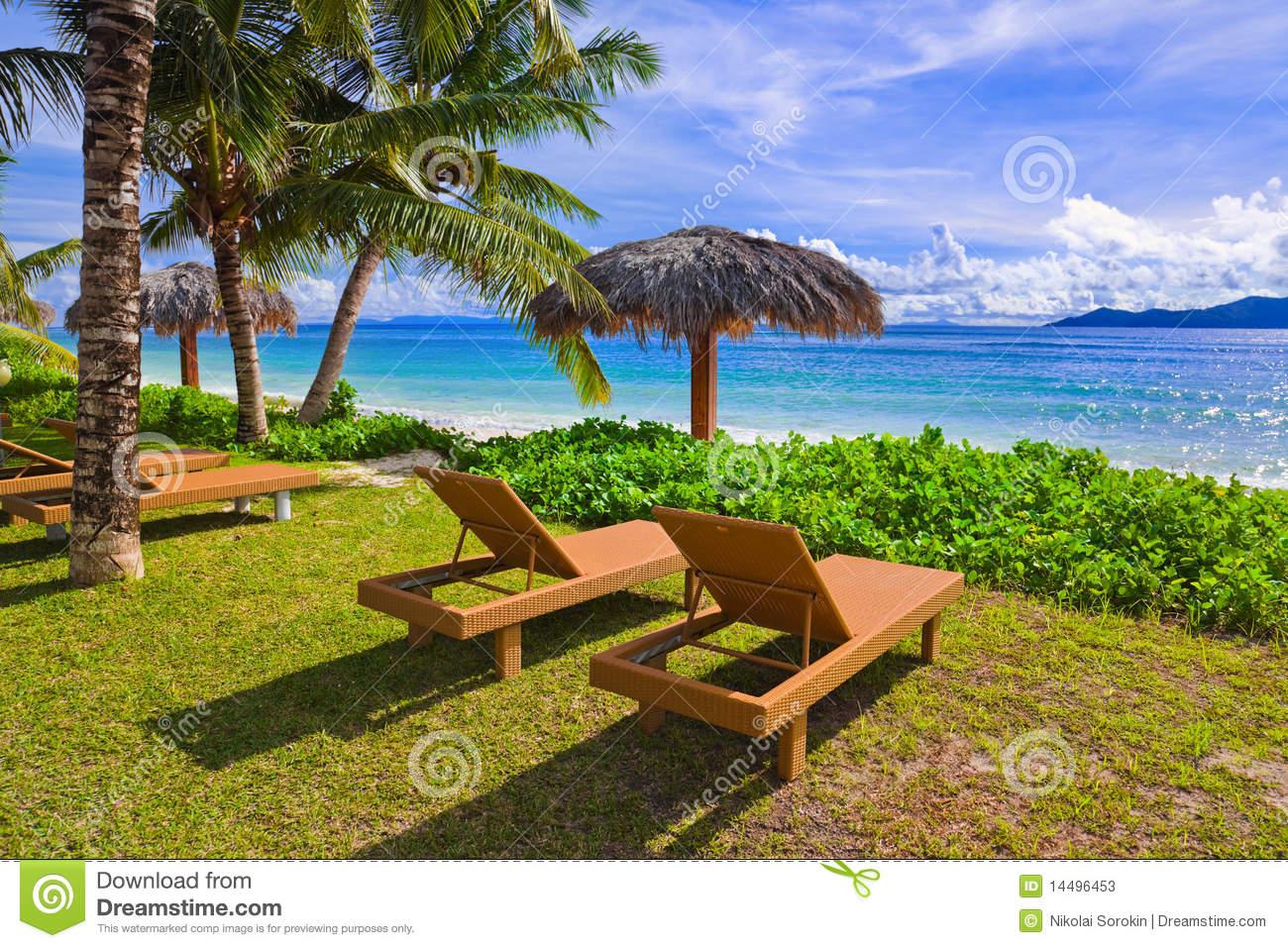 Tropical Beach Chairs Tropical Beach Chairs ...