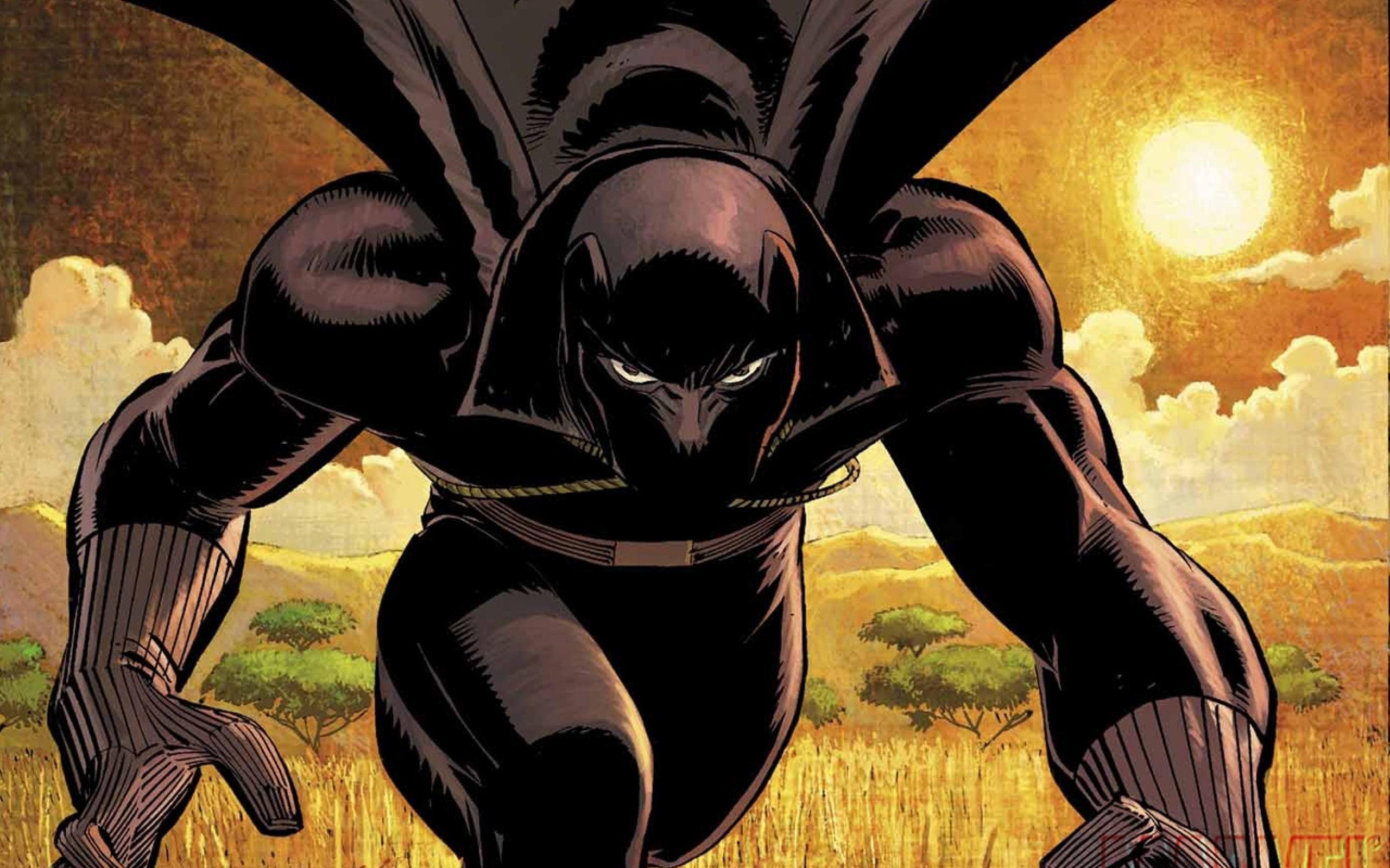 black panther comics marvel comics 1280x960 wallpaper Art HD Wallpaper 2560x1600