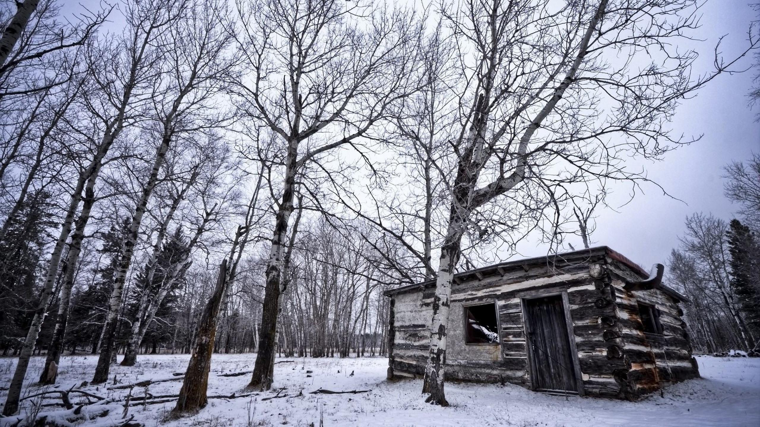 Wallpapers Backgrounds   wallpaper background nature winter cabin 2560x1440