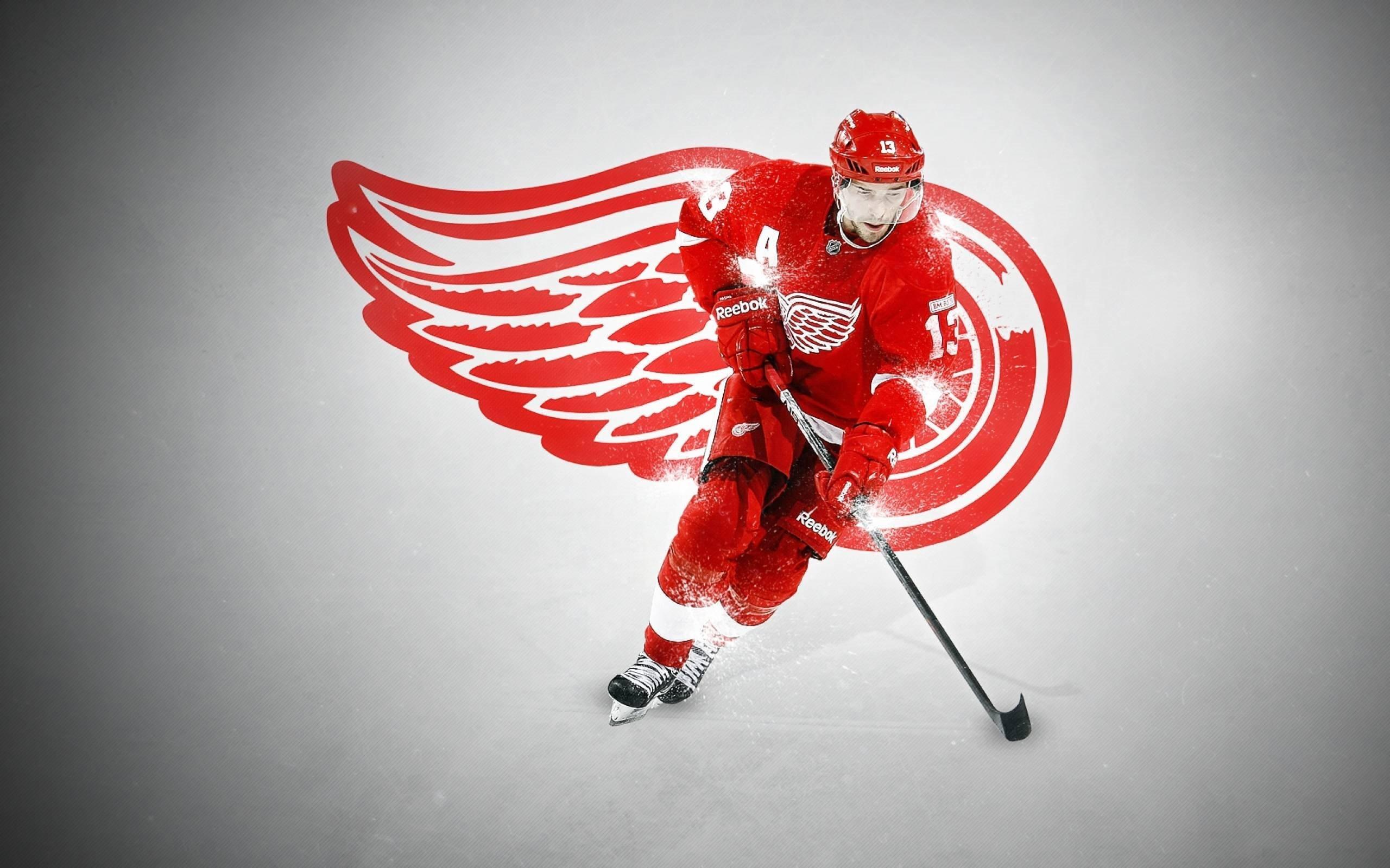 Detroit Red Wings Henrik Zetterberg 3737 Wallpapers and 2560x1600