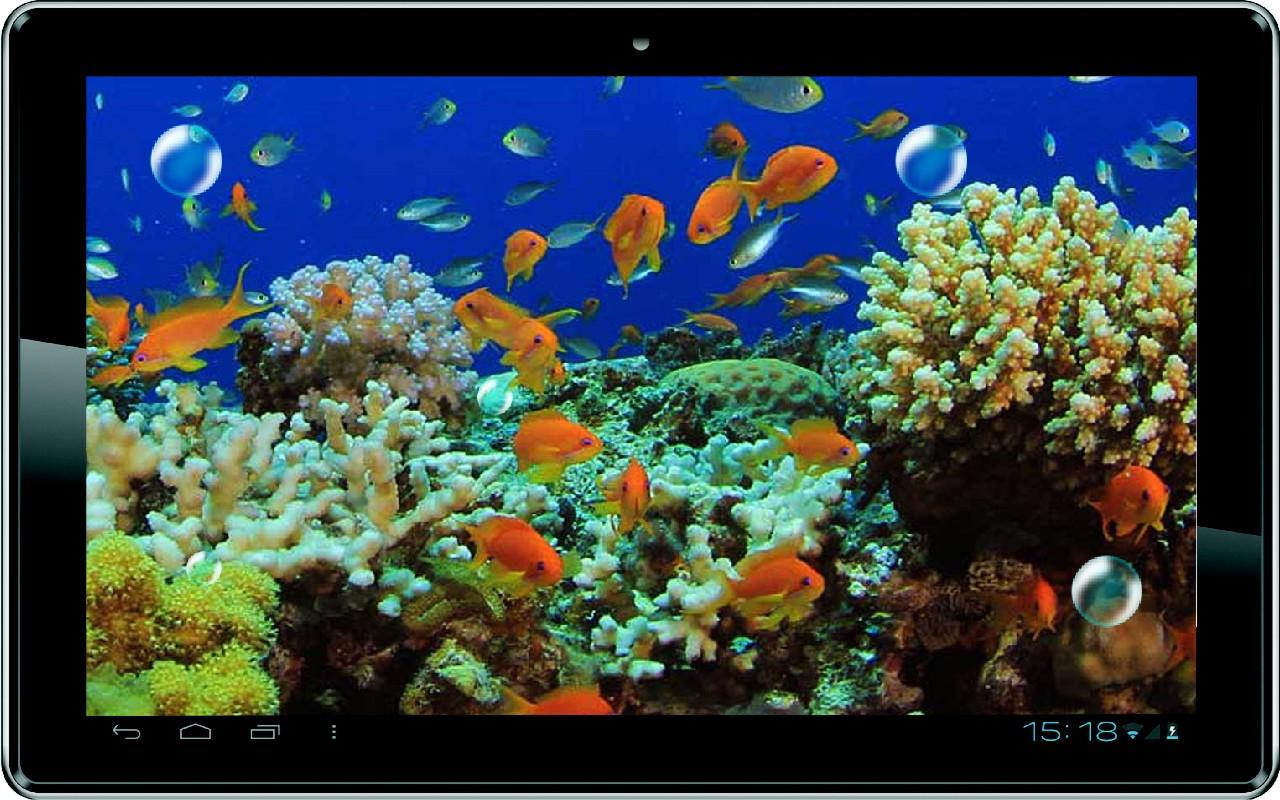 Live wallpaper for android Killer Fish 3D Live wallpaper 11 download 1280x800