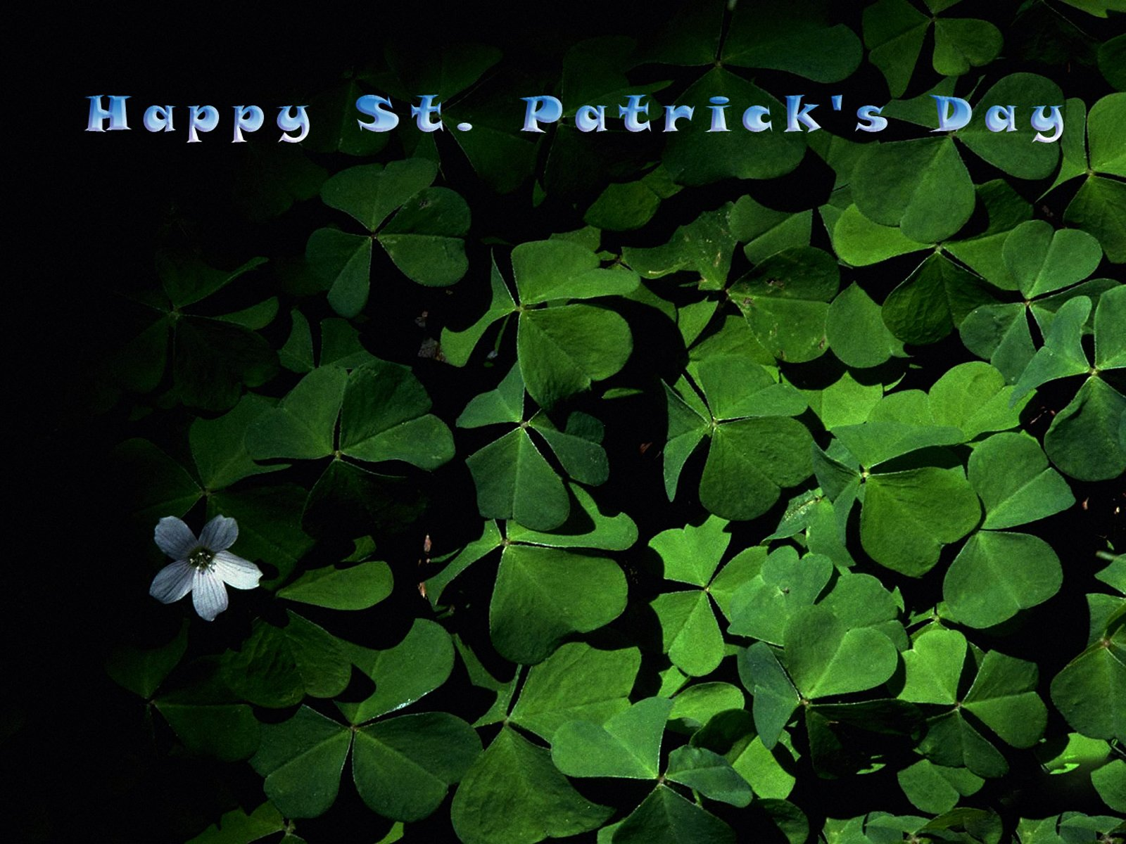 st patricks day desktop wallpaper 1600x1200