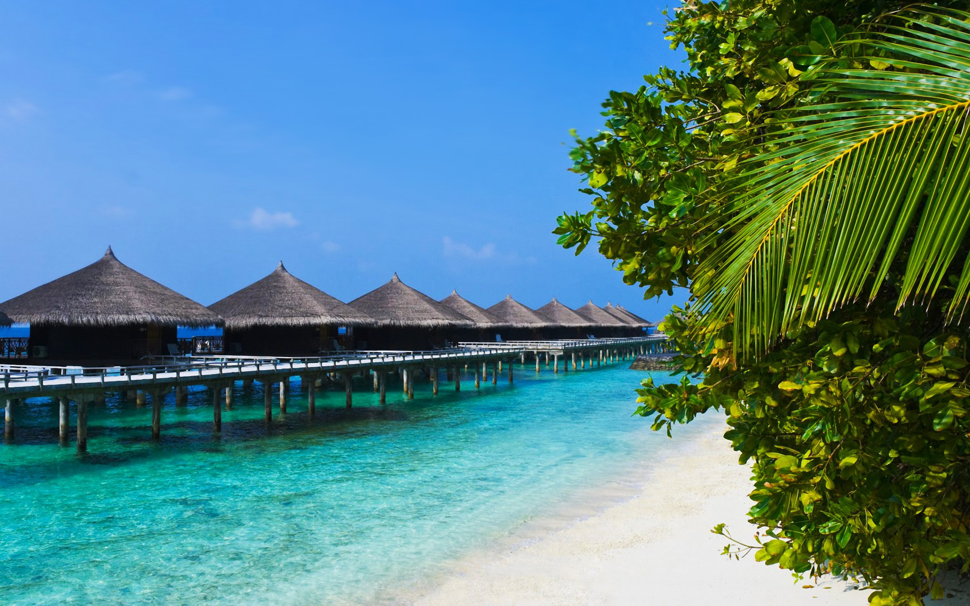 Tropical Beach Desktop Backgrounds HD wallpaper background 1920x1200