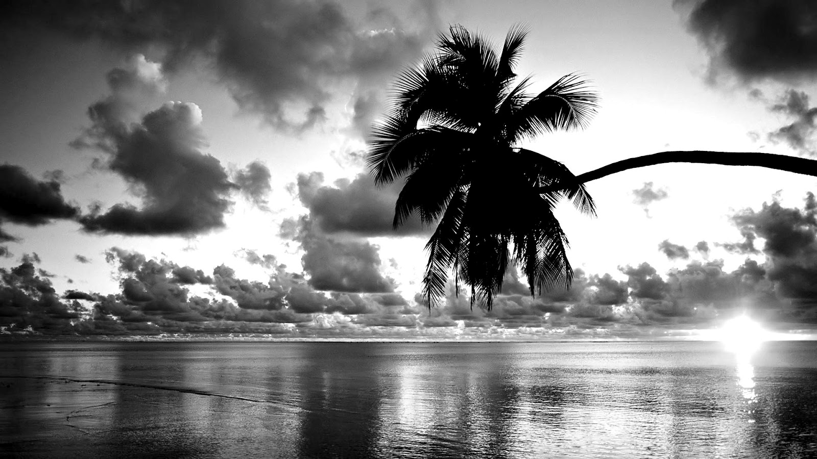 Beautiful black and white Sunset wallpaper 1600x900