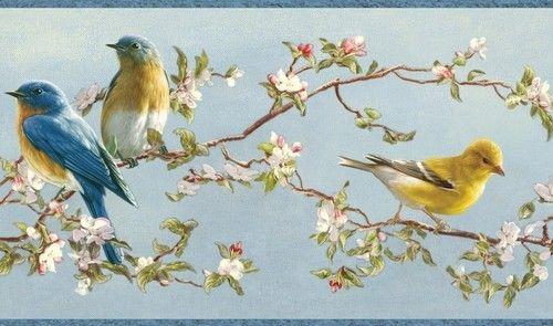 Wallpaper Border Hautman Brothers Songbird Blue Yellow Birds Pink Wh 500x295