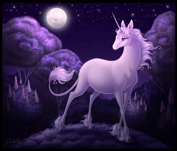 fantasy unicorn horse images wallpaper 680x579