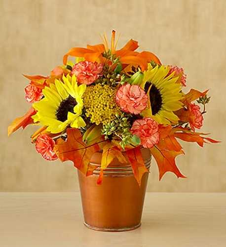 Wallpapers Download Pictures Images and Photos Fall Flower 458x500