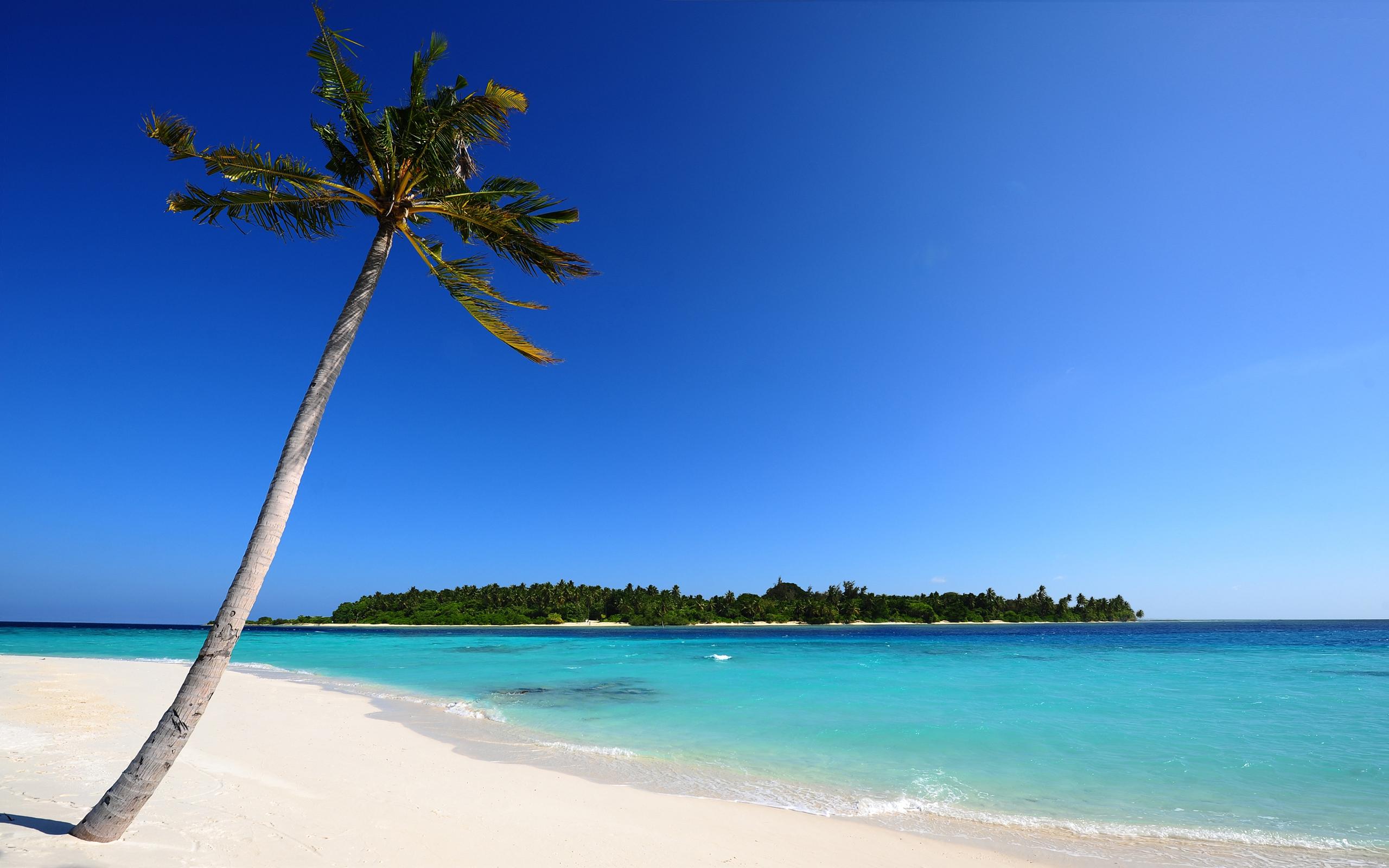Free Desktop Wallpaper Beach Themes