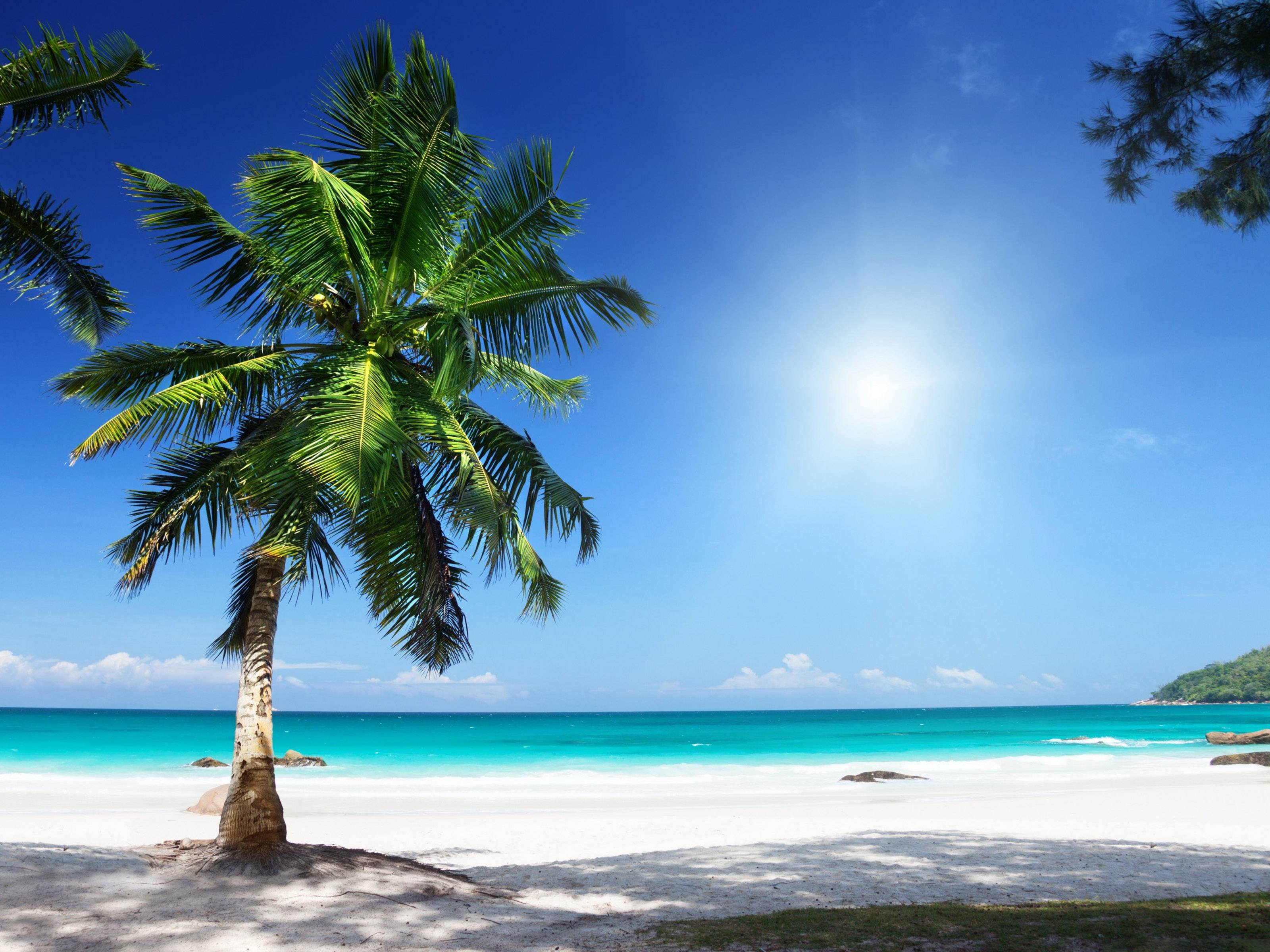 Sunny Beach Wallpapers 3200x2400