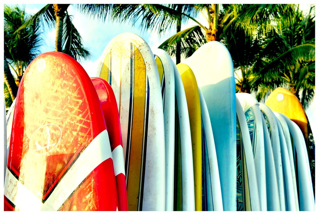 Surfboard Wallpaper Surfboard selection by 1024x690