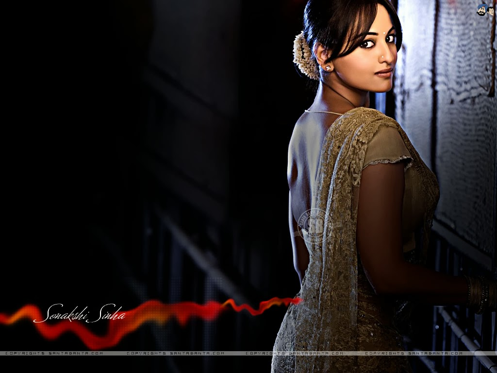 Sonakshi sinha New 2014 HD Desktop Best Wallpaper New 1024x768