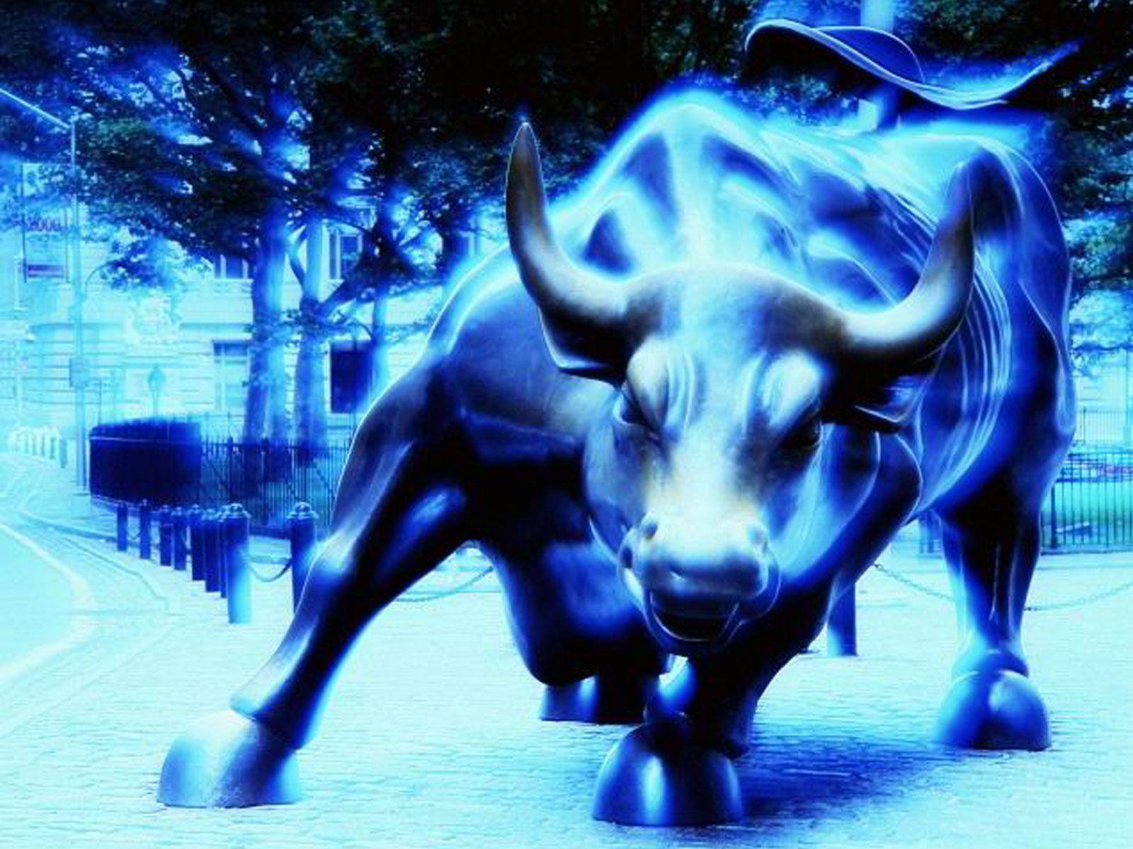Blue Bulls Wallpapers 1600x1200