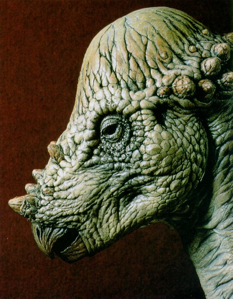 Pachycephalosaurus Pictures Facts   The Dinosaur Database 782x1002