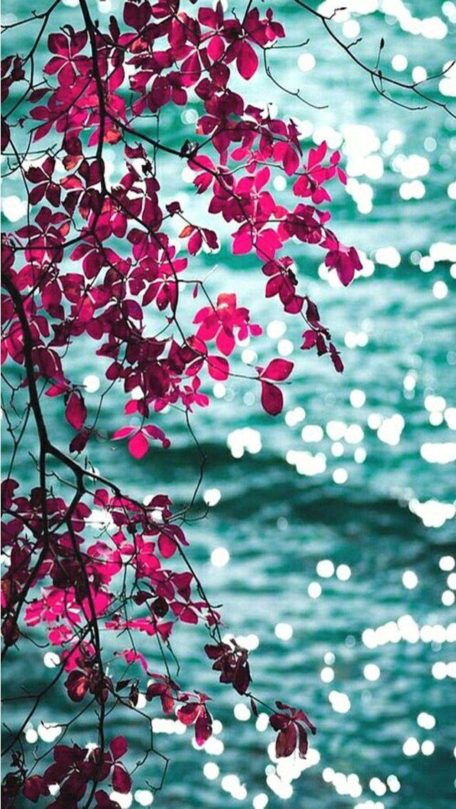 Pink aqua floral leaves bokeh ocean sea view iphone phone 640x1136