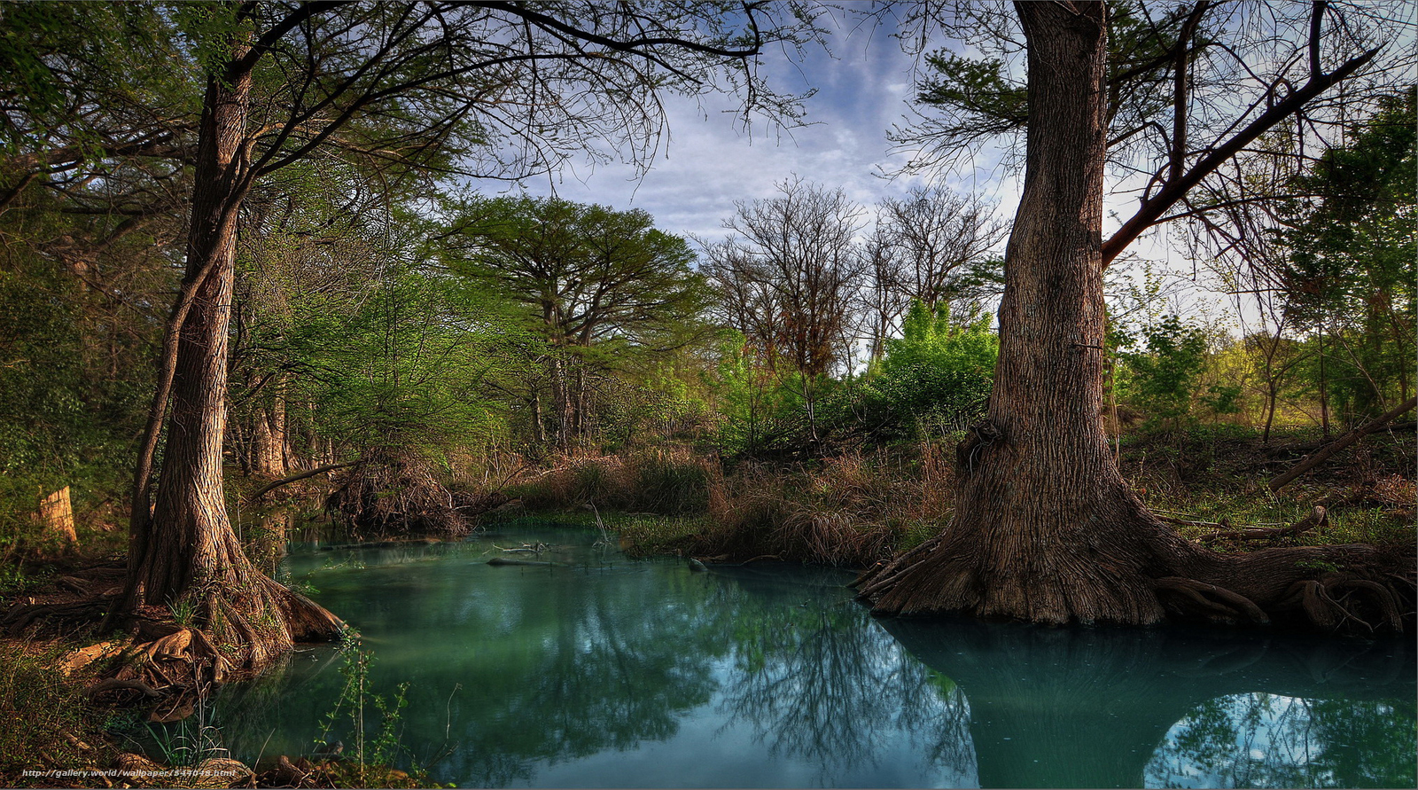 Download wallpaper Hill Country Creek texas desktop wallpaper 1600x891