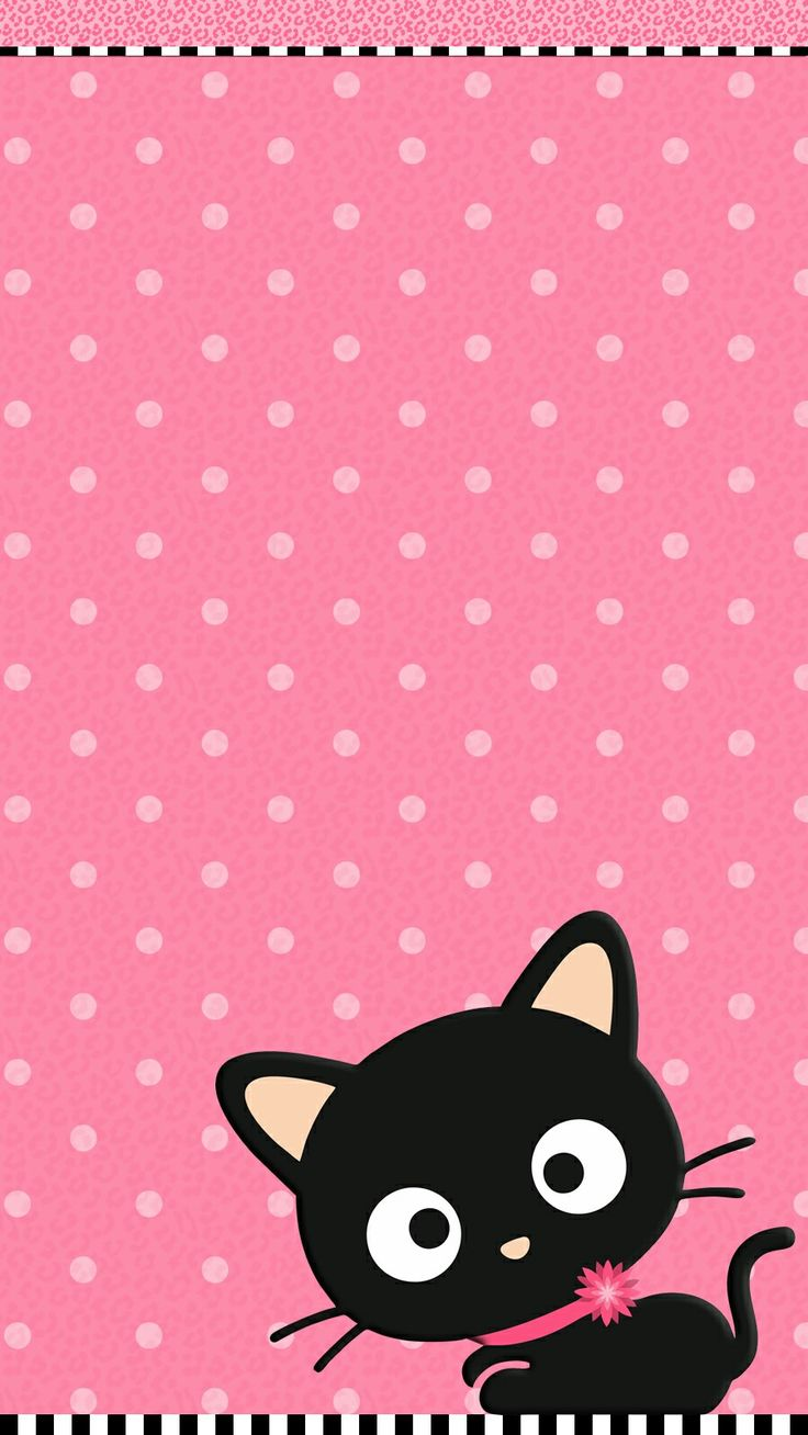 Cute Cat Pink Wallpaper iPhone 2021 Live Wallpaper HD 736x1308