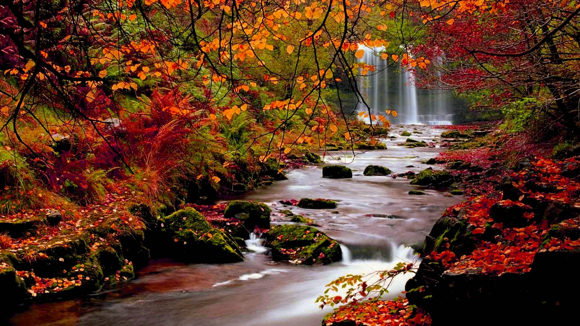 Cool Fall Backgrounds 1920x1080
