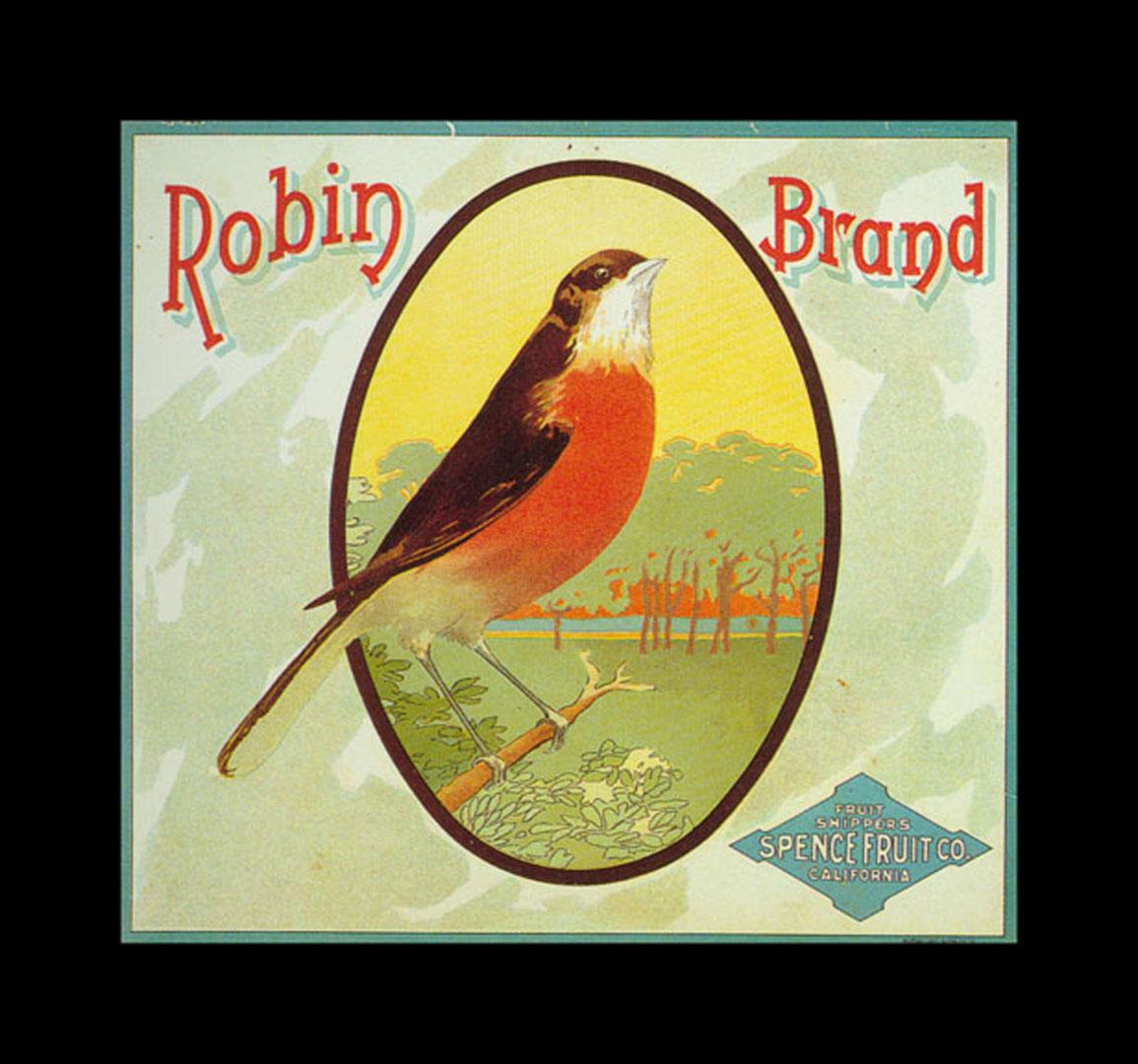 Robin Brand Oranges   Vintage Fruit Crate Labels Wallpaper Image 1155x1080