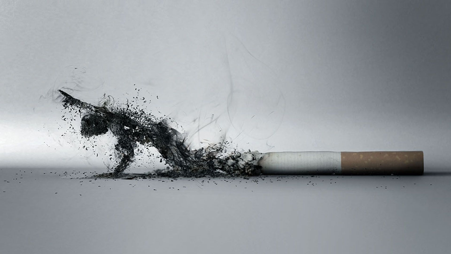 Smoking Kills The Human Funny Picture Funny Pictures 1920x1080