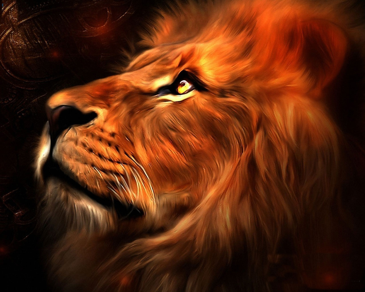 Sanny Lion Best Wallpaper 2015 Wallpapersafari