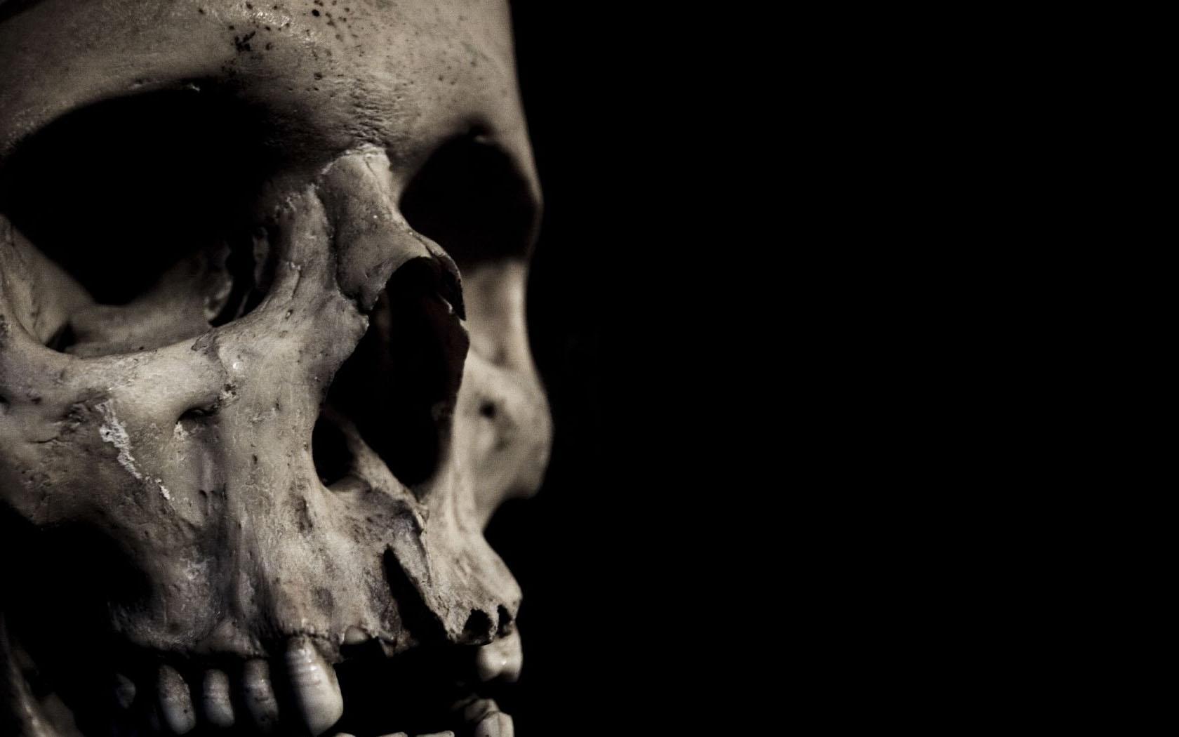 888038 skull wallpaperjpg 1680x1050