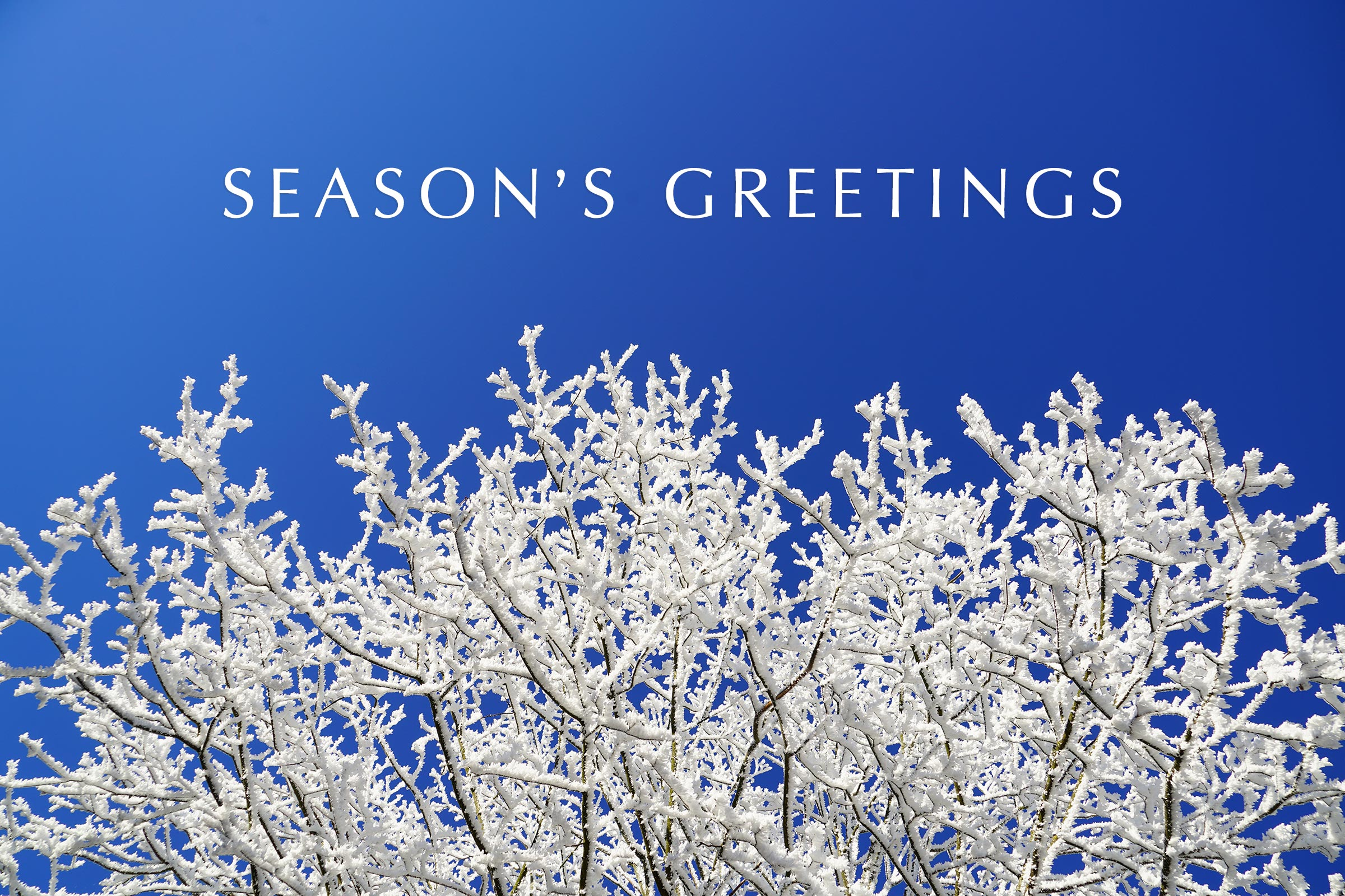 15 Seasons Greetings Cards Stock Images HD Wallpapers Winter 2400x1600