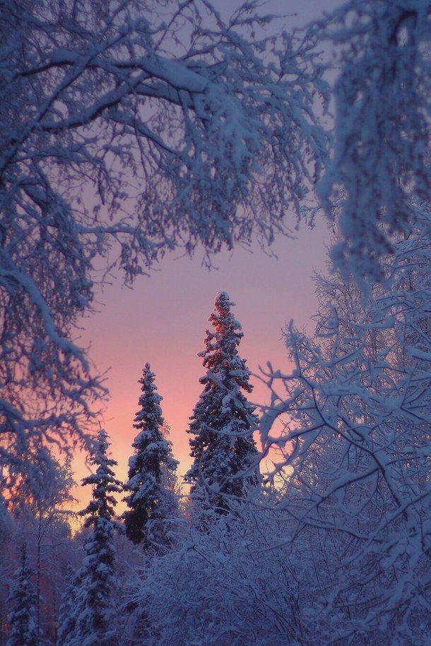 background beautiful Winter sunrises Paisaje invernal 610x915