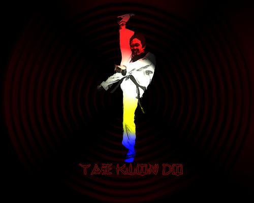 Scorpion Taekwondo Wallpapers Flickr   Photo Sharing 500x400