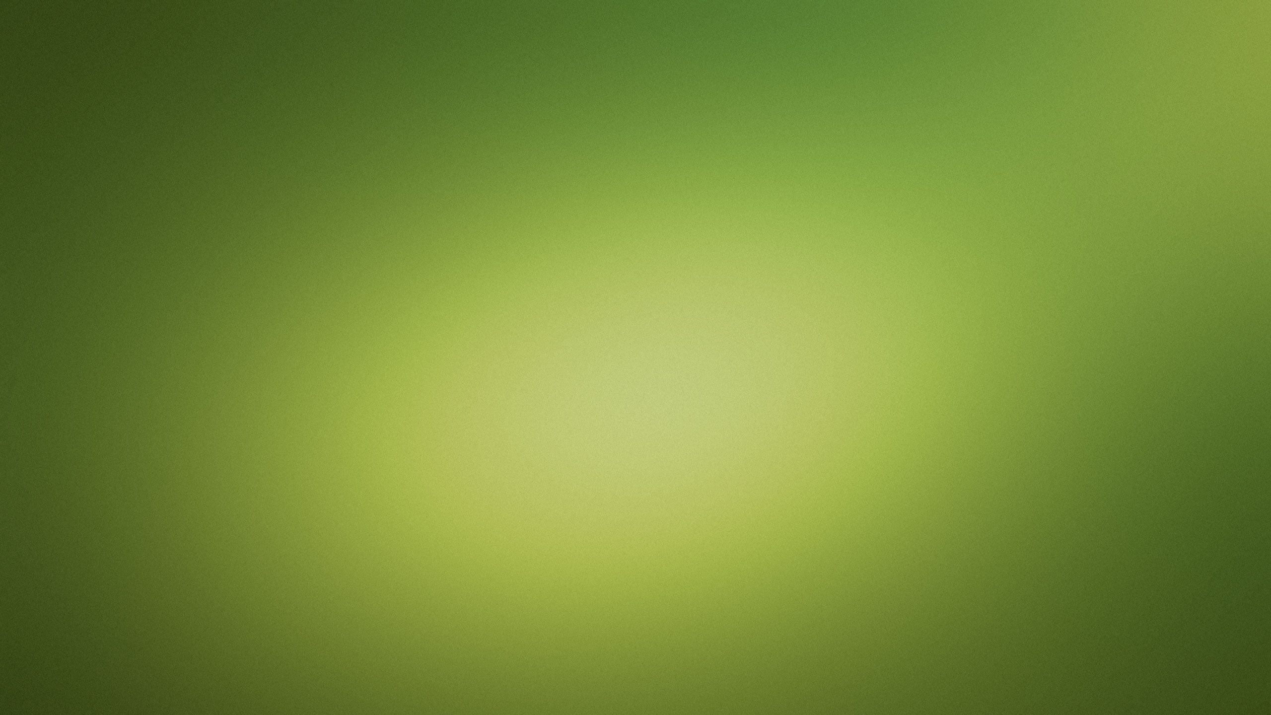 Light Green Background Desktop Wallpaper 2560x1440