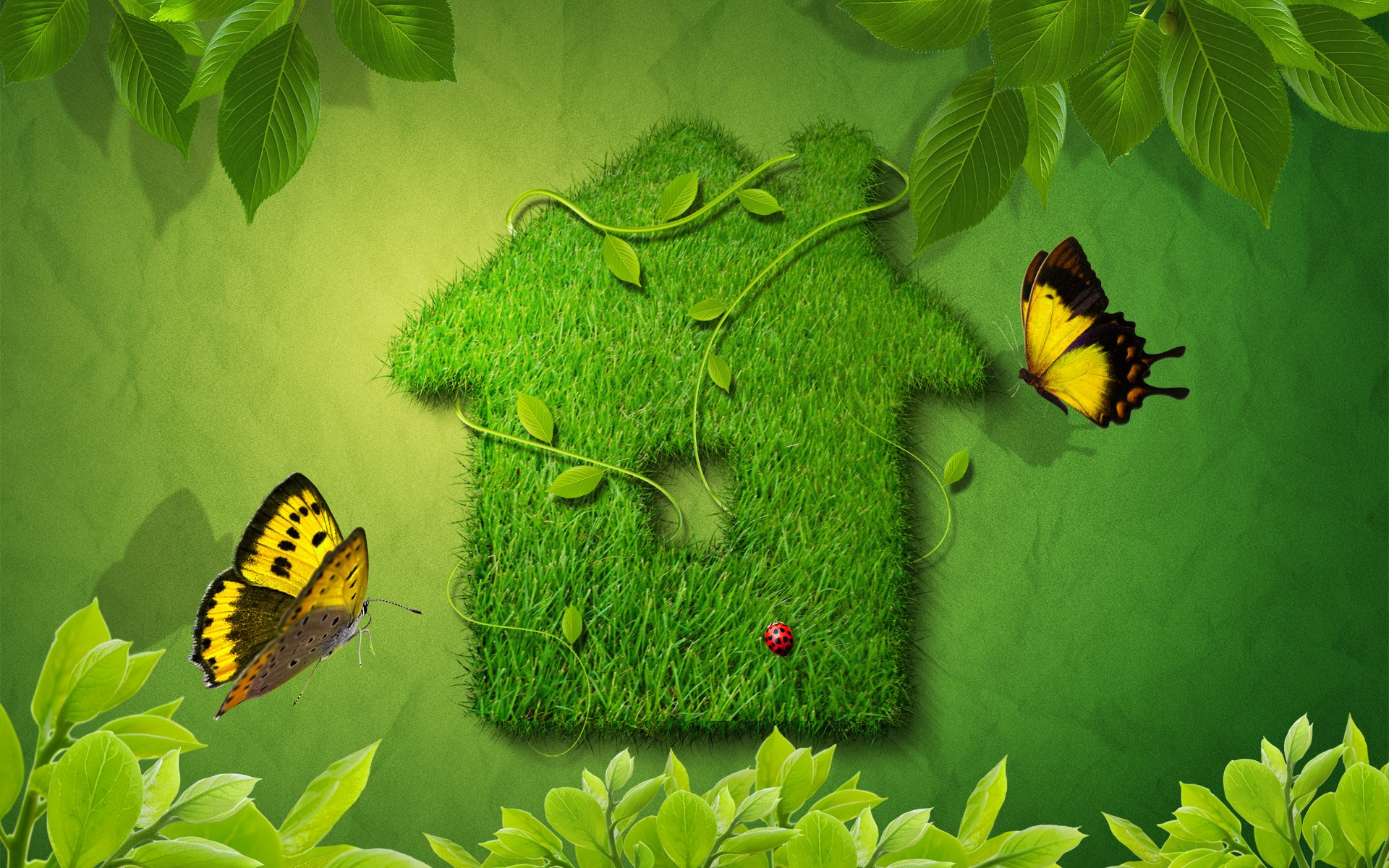 Creative Green House Wallpapers HD Wallpapers 1920x1200