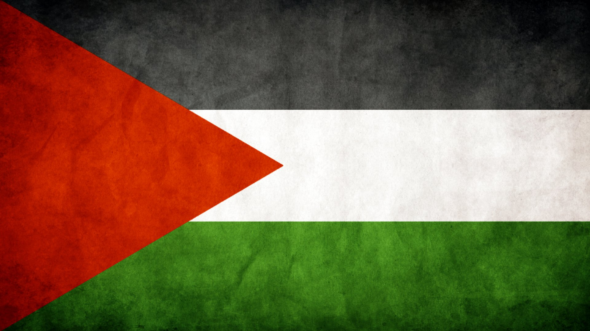 Palestine Flag Exclusive HD Wallpapers 6856 1920x1080