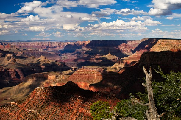 Grand Canyon   National Geographic Photo Contest 2011   National 608x403