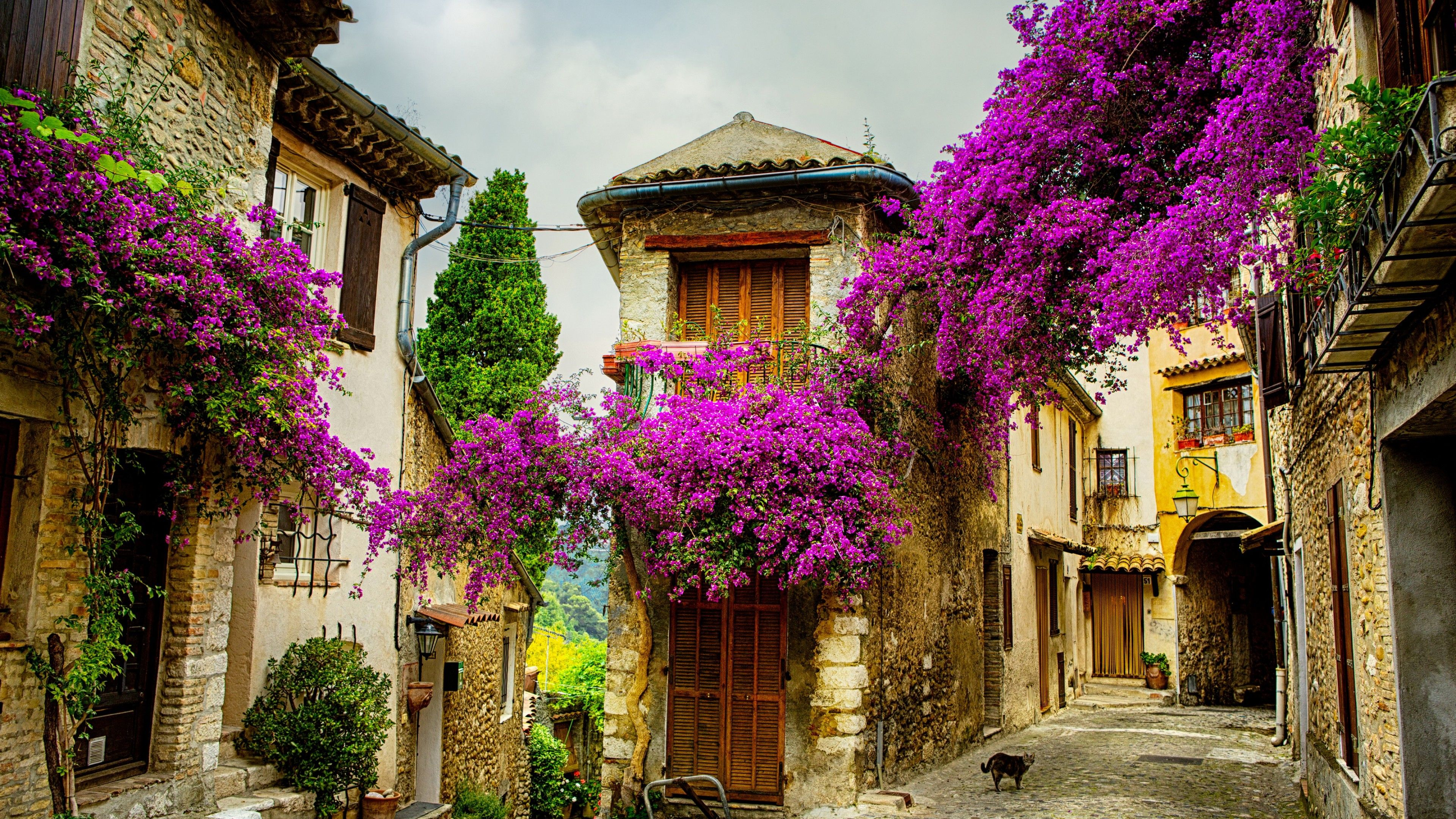 Provence France Wallpapers   Top Provence France Backgrounds 3840x2160